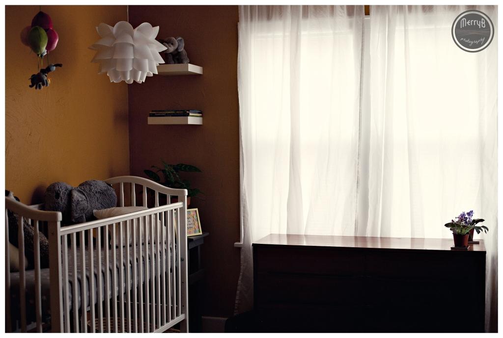 Allison Maternity_0011