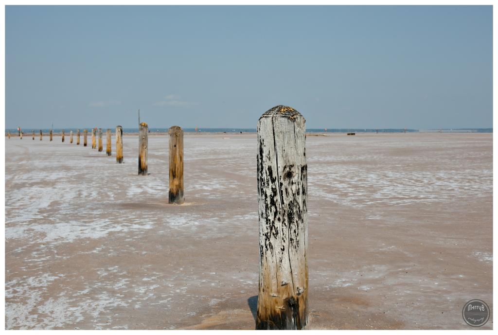 great salt plains_0002